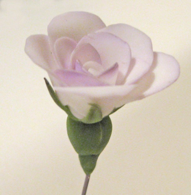 tiny-polymer-rose